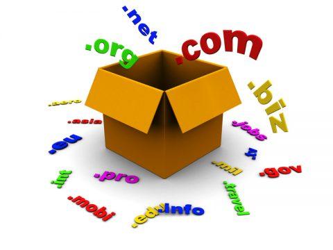 Domain Sektörüne Neden Girdim?